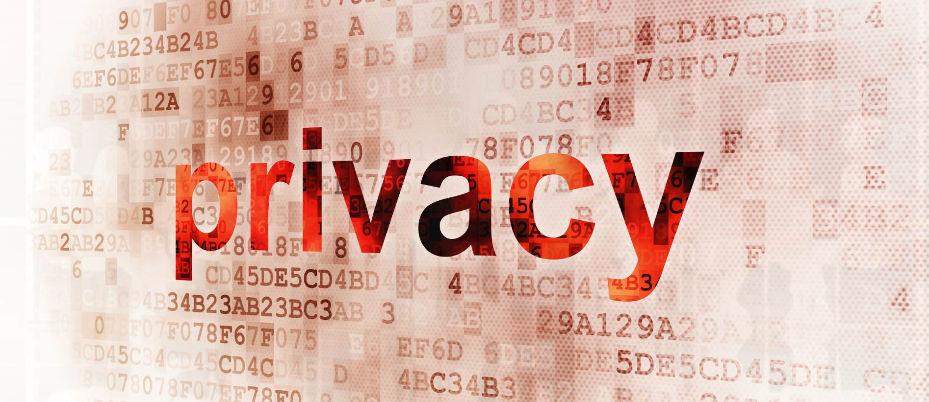 Privacy Audit